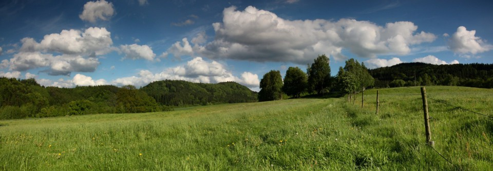 louky a pastviny